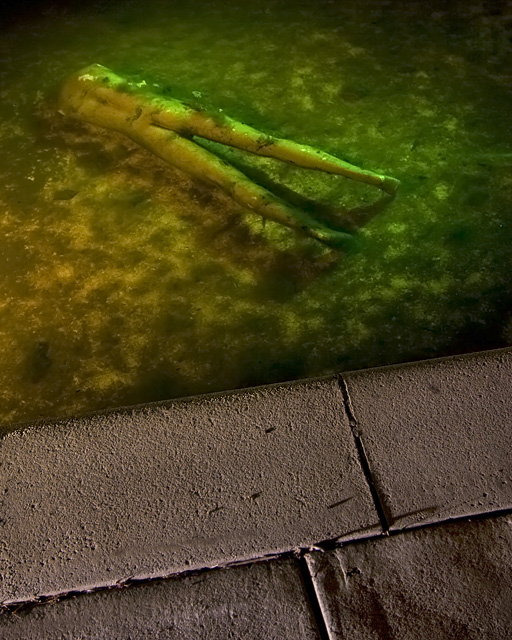 Bottom Feeder  :::::  In the waterslide catch pool.