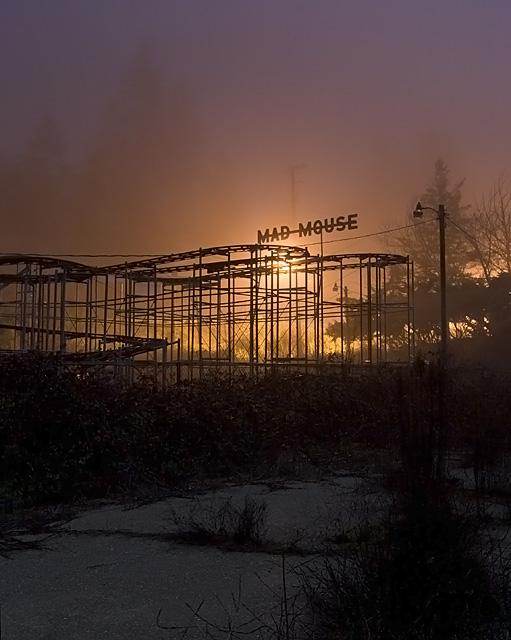 Foggy Madness  :::::  From the overgrown Go Kart track.