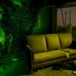 Interior Ivy  :::::  Abandoned perimeter building.