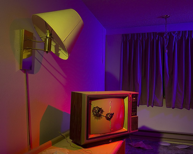 Bobby Peru's Room :::::  2013  :::::  Mount Montgomery, Nevada