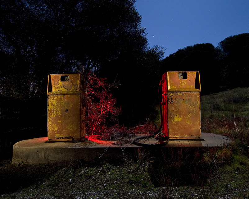 The Twins  :::::  2008  :::::  Fort Ord, California.