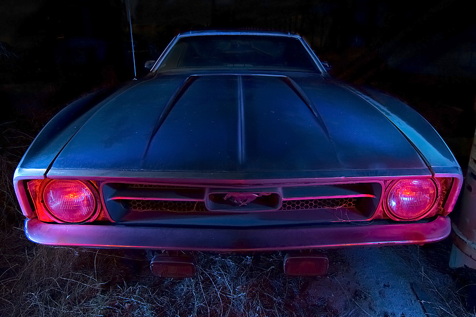 Pony Withers  :::::  1971 Mustang