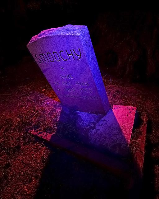 Death To Smoochy :::::