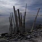 Salton Sink  :::::  2008  :::::  Shoreline decay at Salton Sea Beach.