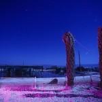Twin Palms :::::  1992  :::::  Salton Sea Beach.