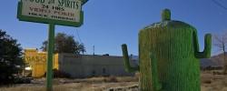 The Fat Saguaro  :::::  The Oasis, Carson Plains, Nevada