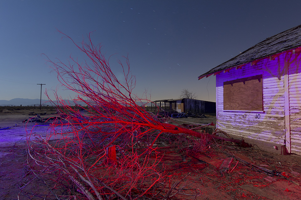 Tentacle Deadfall  :::::  Antelope Valley, California