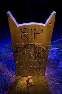 Blinkin's Whiskers  :::::