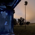 Sniper  :::::  The burned and smashed kitchen commands the high ground above the windswept Contra Costa hills.