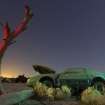 Under the Wishing Tree  :::::  1980s Pontiac Firebird