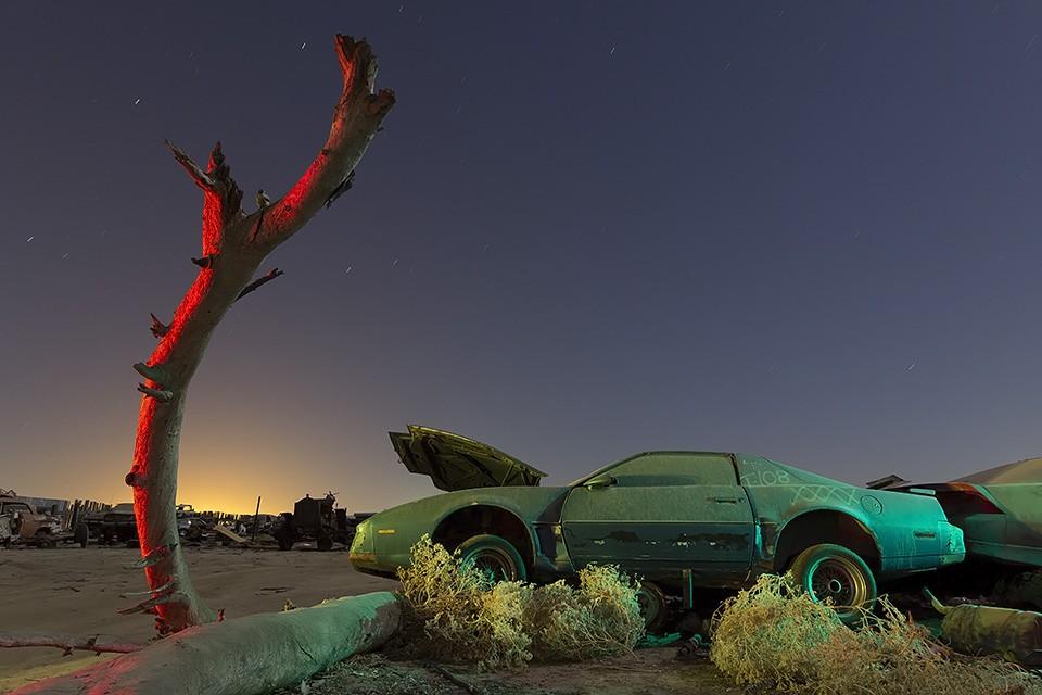 Under the Wishing Tree  :::::  1980s Pontiac Firebird