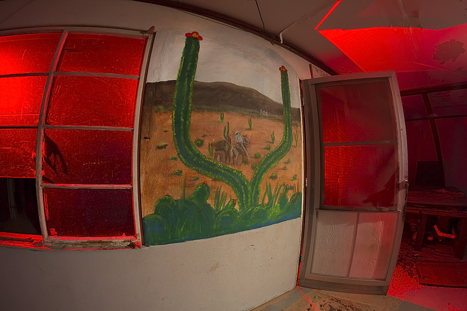 Saguaro Split