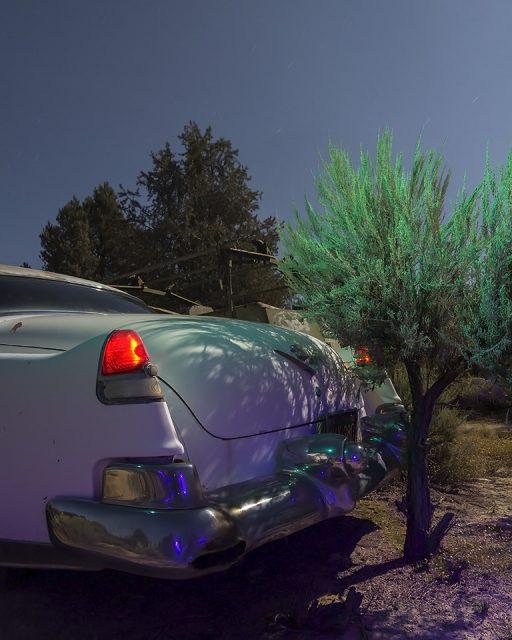 Bonsai de Ville  :::::  1953 Cadillac